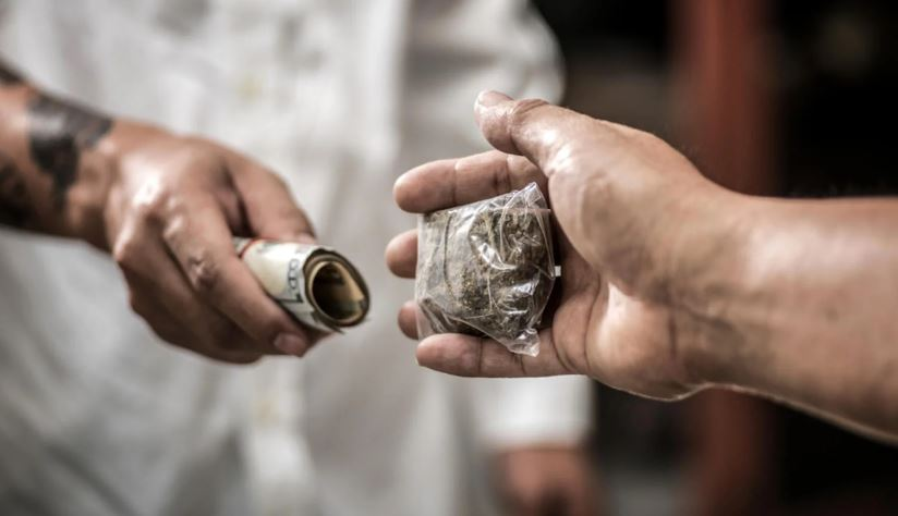 Drug trafficking on rise in J&K, 2100 held in past 15 months